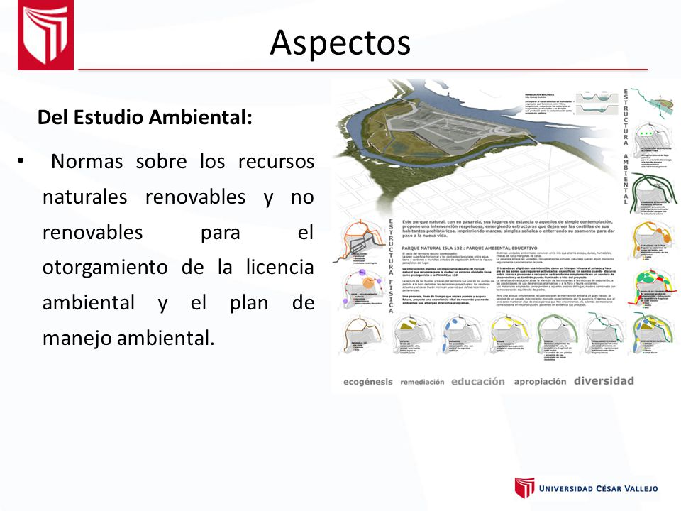 Aspectos Del Estudio Ambiental:
