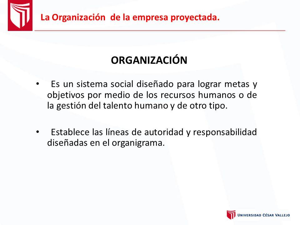 ORGANIZACIÓN La Organización de la empresa proyectada.