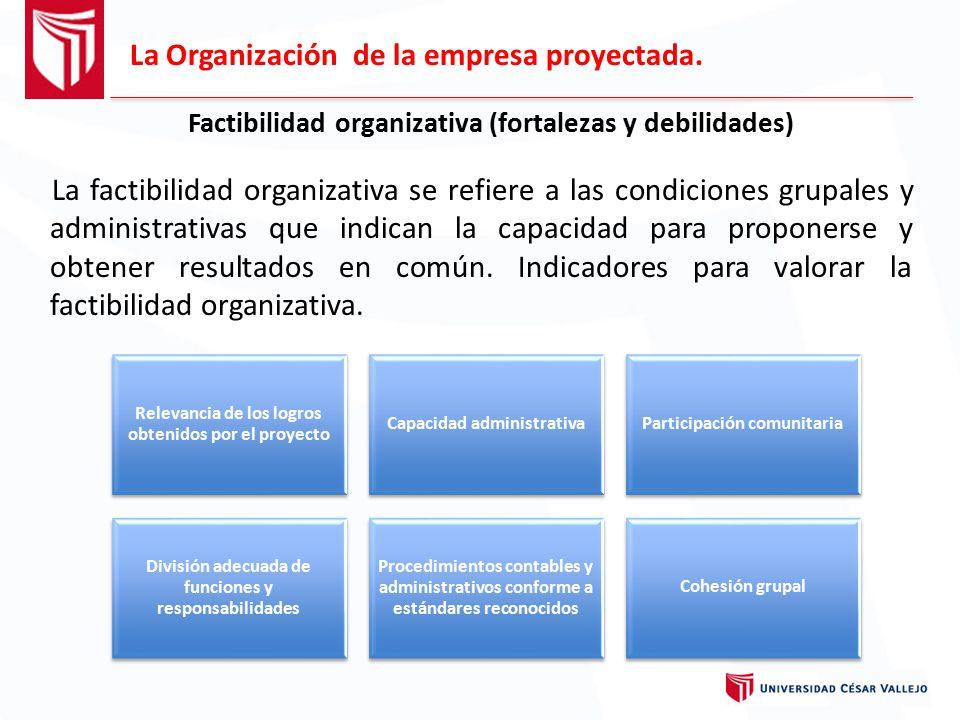 Factibilidad organizativa (fortalezas y debilidades)