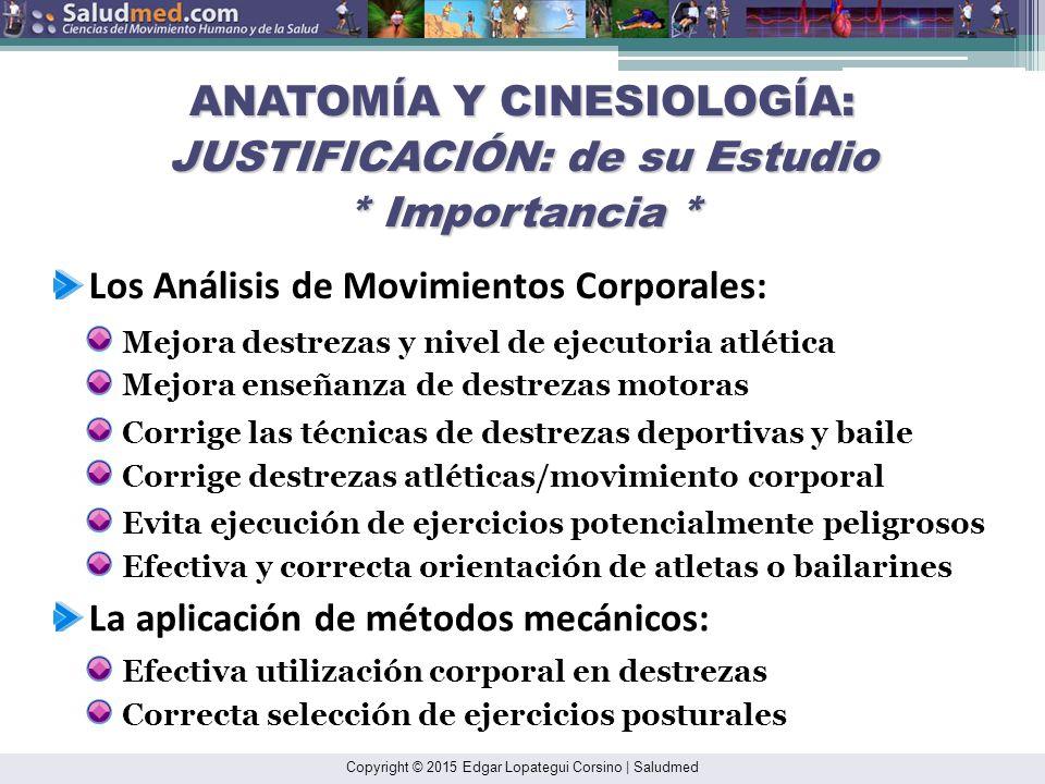 Encantador Importancia De La Anatomía Que Estudia Imagen - Anatomía ...