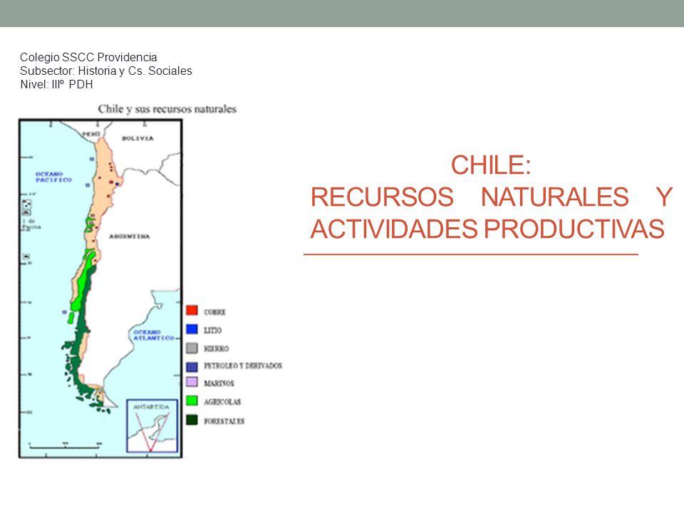 CHILE: RECURSOS NATURALES Y ACTIVIDADES PRODUCTIVAS - ppt ...