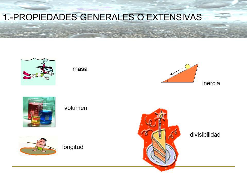 Instituto cartagena del mar ppt descargar for Inmobiliaria o inmobiliaria