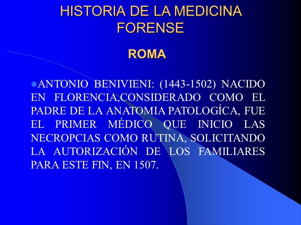 Perfecto El Padre De La Anatomía Composición - Imágenes de Anatomía ...