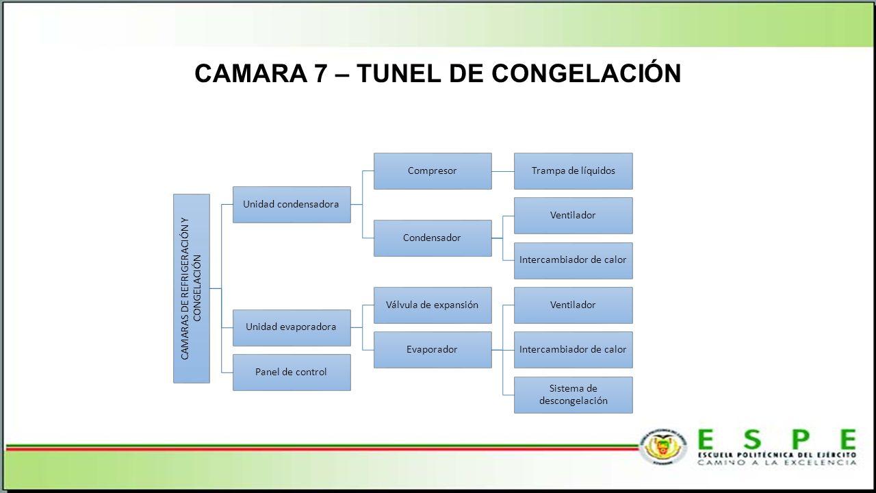 CAMARA 7 – TUNEL DE CONGELACIÓN