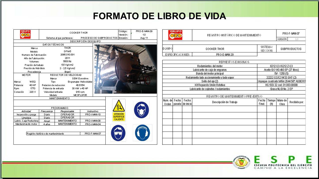 FORMATO DE LIBRO DE VIDA