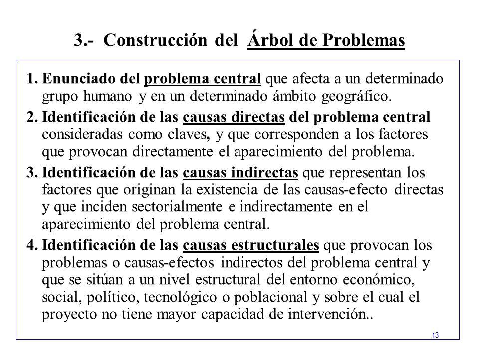 3.- Construcción del Árbol de Problemas