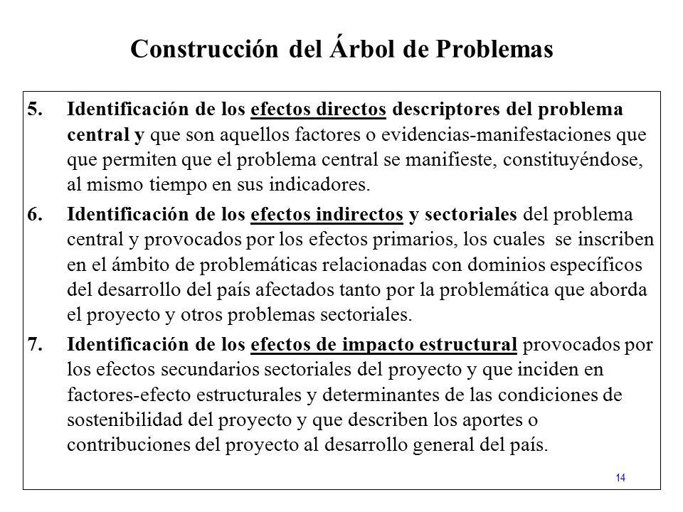Construcción del Árbol de Problemas
