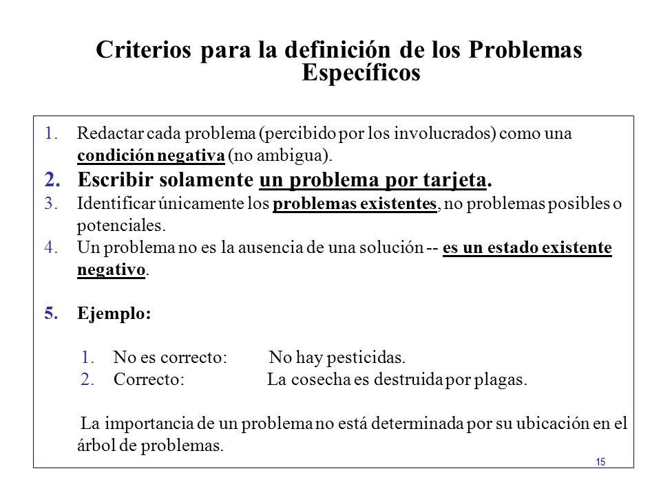 Criterios para la definición de los Problemas Específicos
