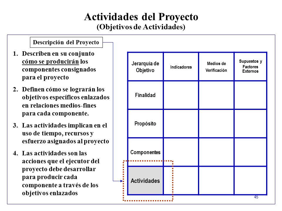 Actividades del Proyecto (Objetivos de Actividades)