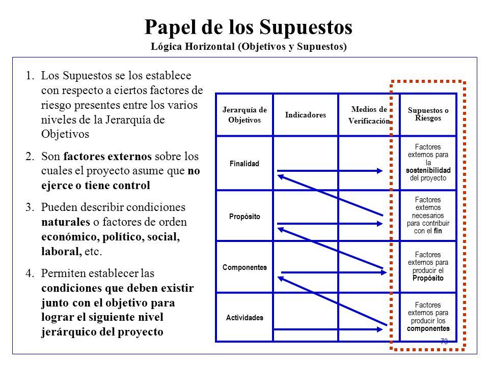 Lógica Horizontal (Objetivos y Supuestos) Jerarquía de Objetivos