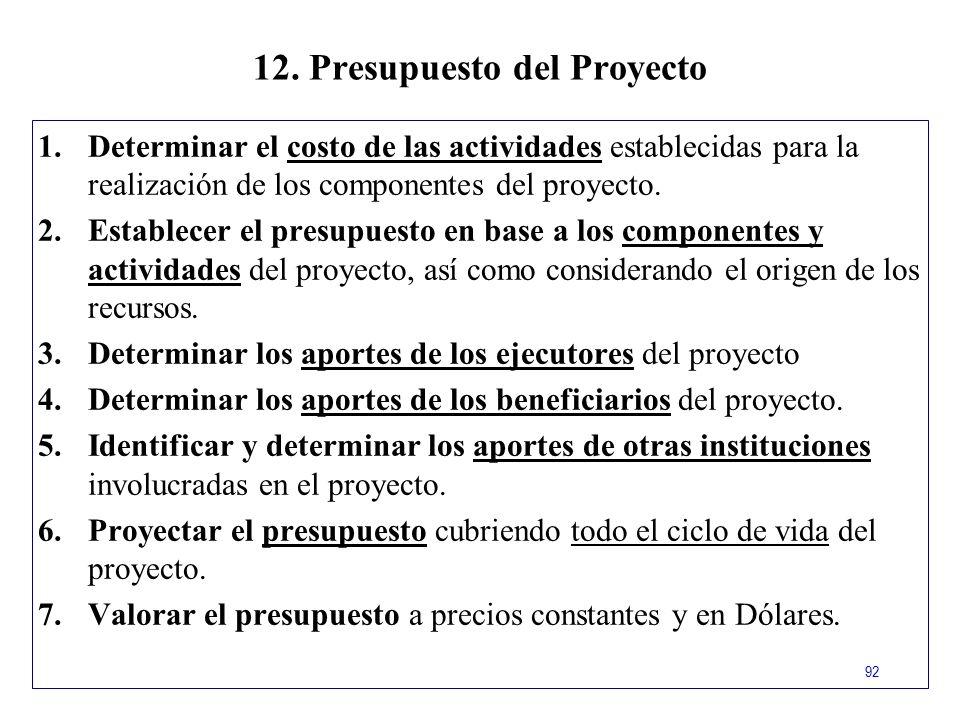 12. Presupuesto del Proyecto