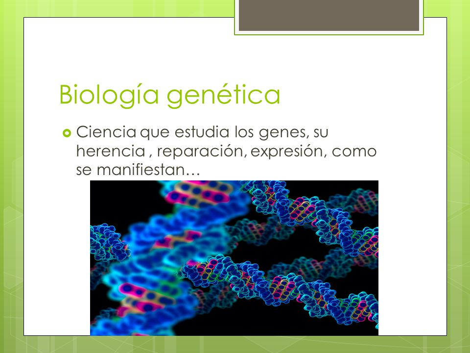 Ramas de la biologia la biolog a utiliza espec ficamente for Arquitectura que se estudia