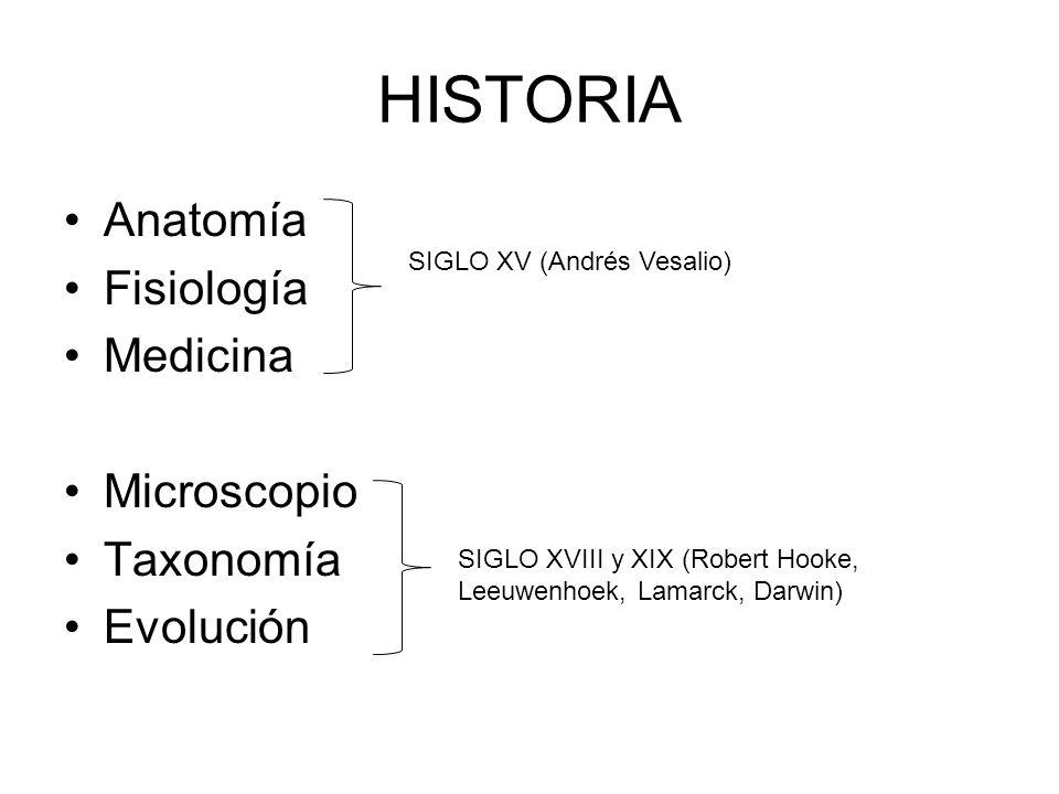 Perfecto Portaobjetos De Microscopio Anatomía Patrón - Imágenes de ...