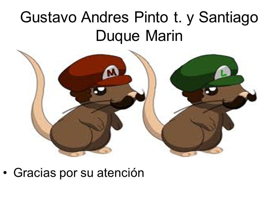 Gustavo Andres Pinto t. y Santiago Duque Marin