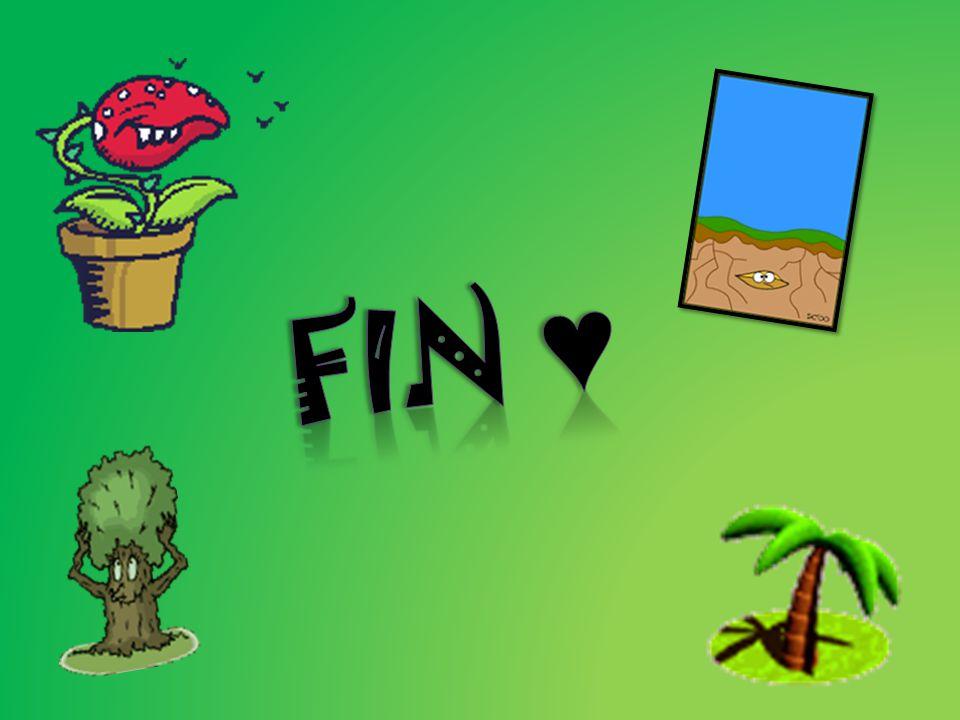 Fin ♥