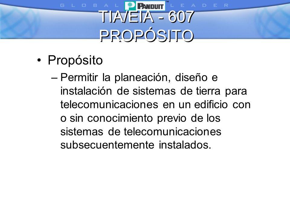 TIA/EIA - 607 PROPÓSITO Propósito