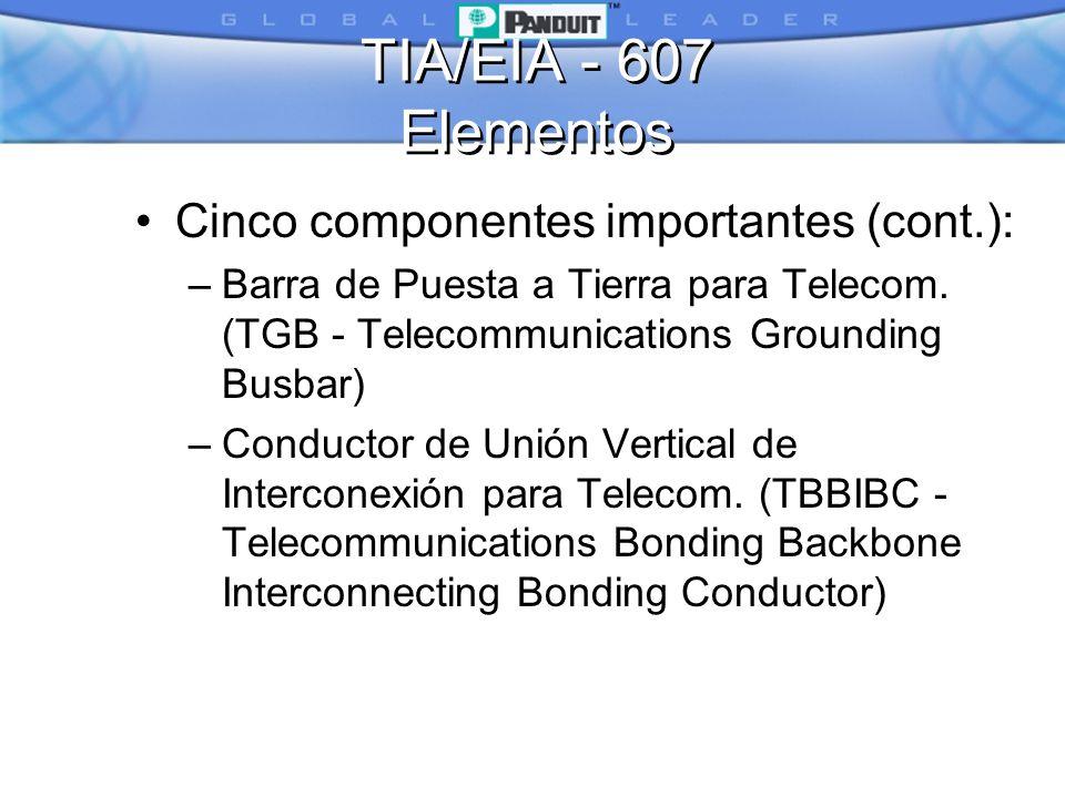 TIA/EIA - 607 Elementos Cinco componentes importantes (cont.):