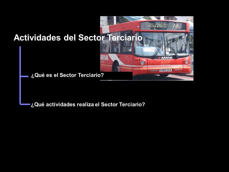 Actividades del Sector Terciario