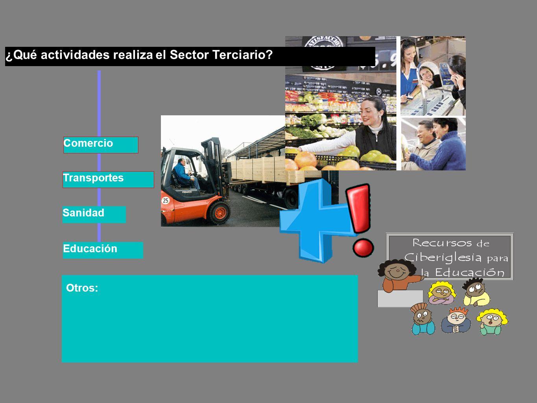 ¿Qué actividades realiza el Sector Terciario