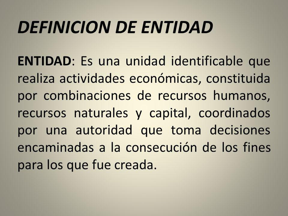 DEFINICION DE ENTIDAD