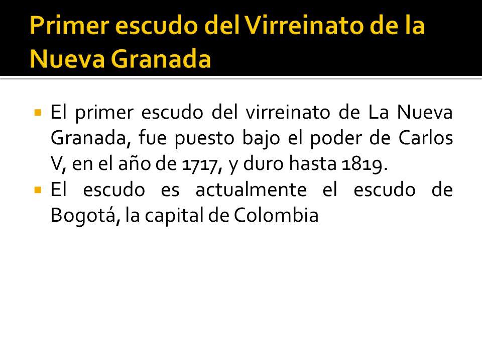 Colombiana 51 ano muestra su conjo peludo y folla su ojete 10