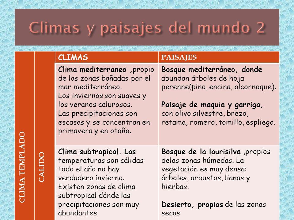 El clima y el paisaje tema ppt descargar for Arboles de hoja perenne para clima mediterraneo