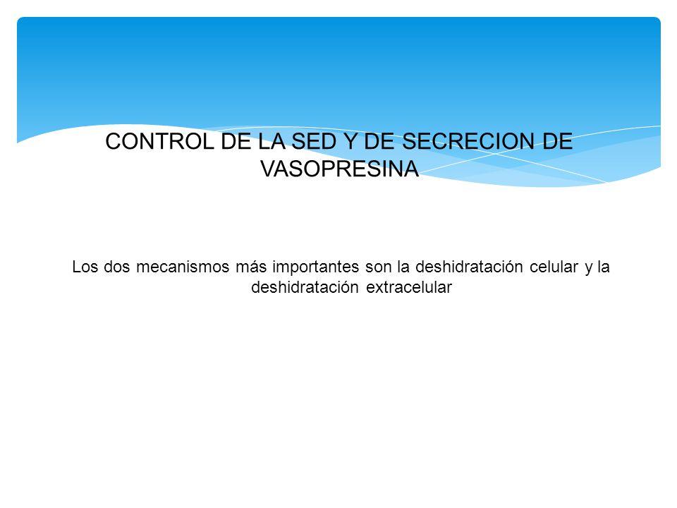 CONTROL DE LA SED Y DE SECRECION DE VASOPRESINA