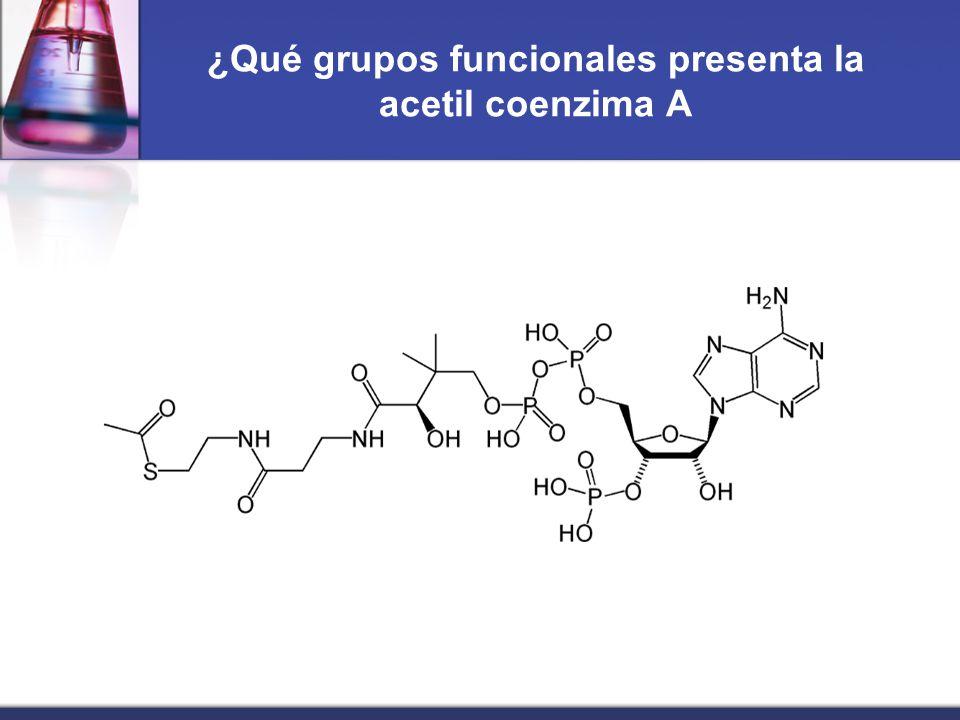 Presentacion De Los Grupos Funcionales: Unidad II: Nomenclatura De Compuestos Orgánicos E