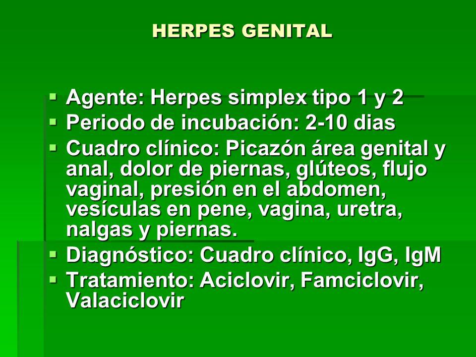 Agente: Herpes simplex tipo 1 y 2 Periodo de incubación: 2-10 dias