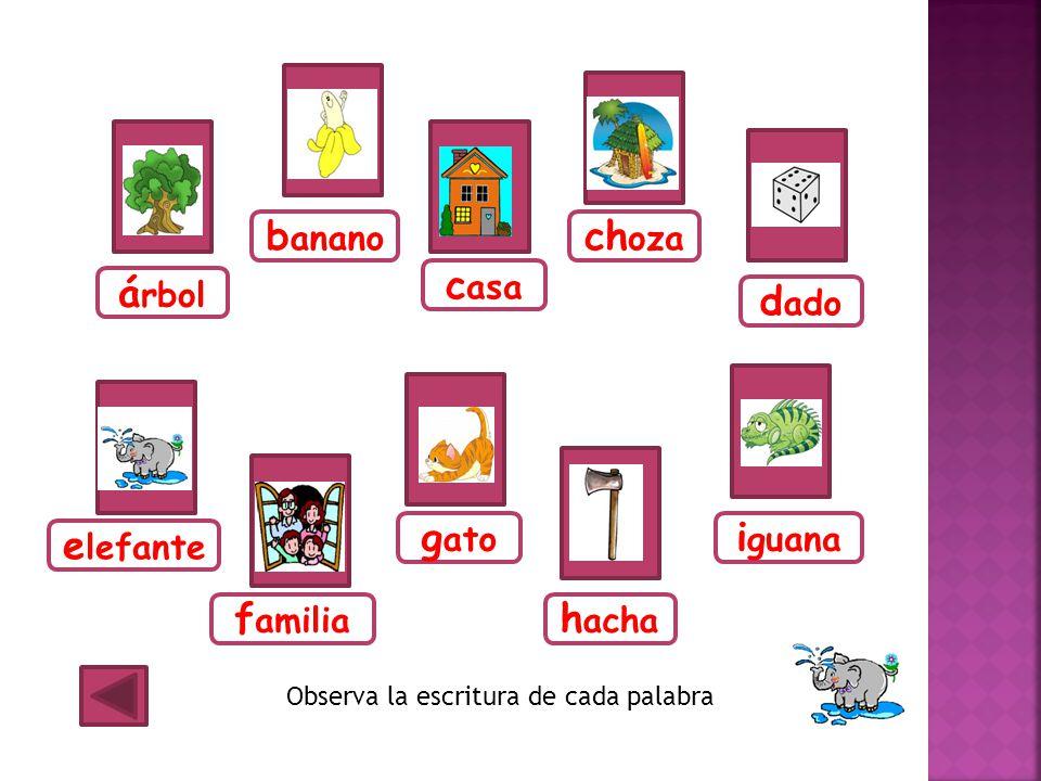 banano choza casa árbol dado gato iguana elefante familia hacha