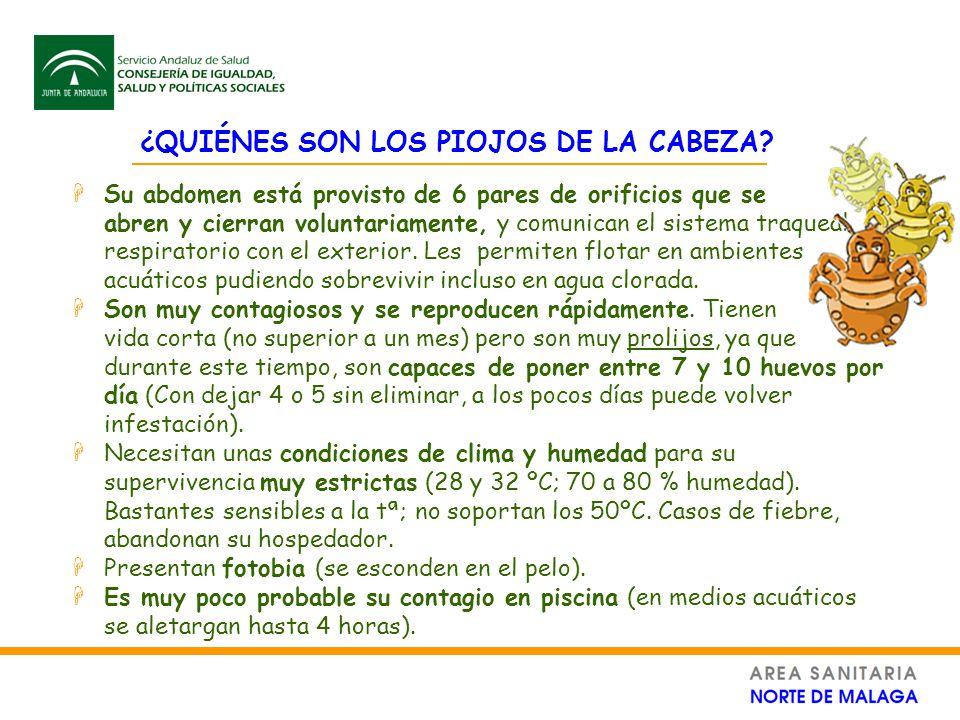 Unidad de protecci n de la salud ppt descargar for Piojos piscina