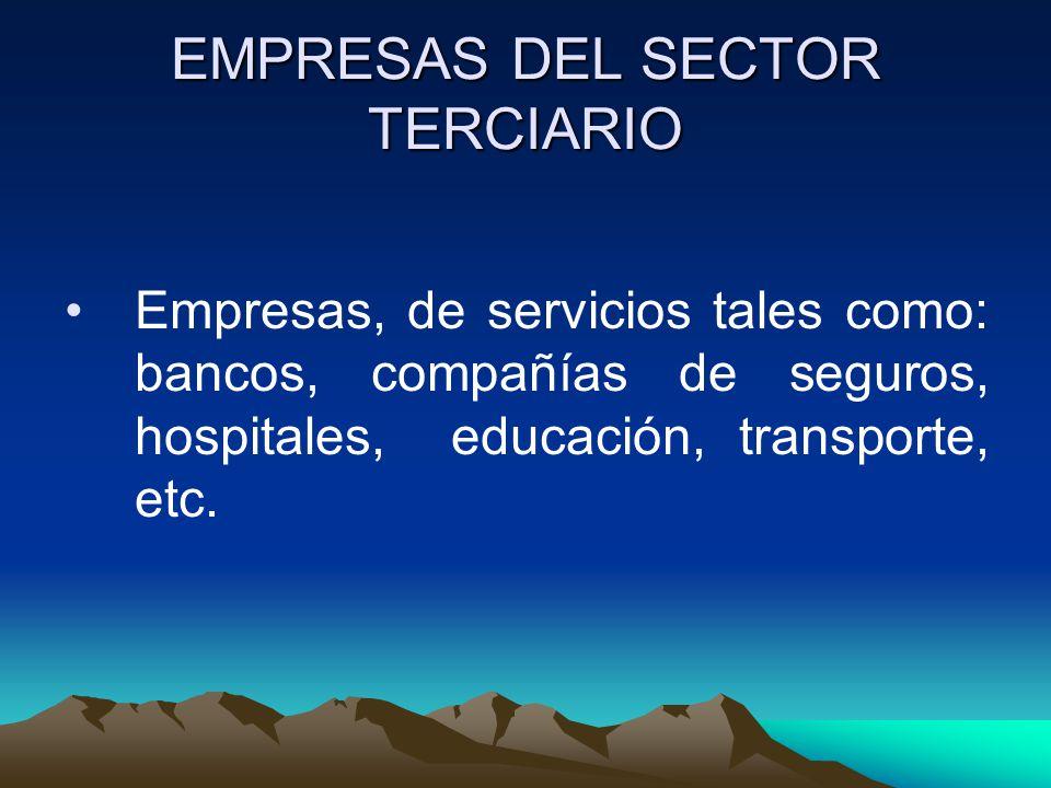 EMPRESAS DEL SECTOR TERCIARIO