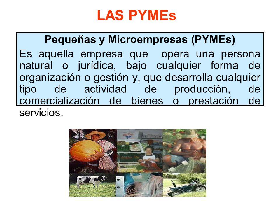 Pequeñas y Microempresas (PYMEs)