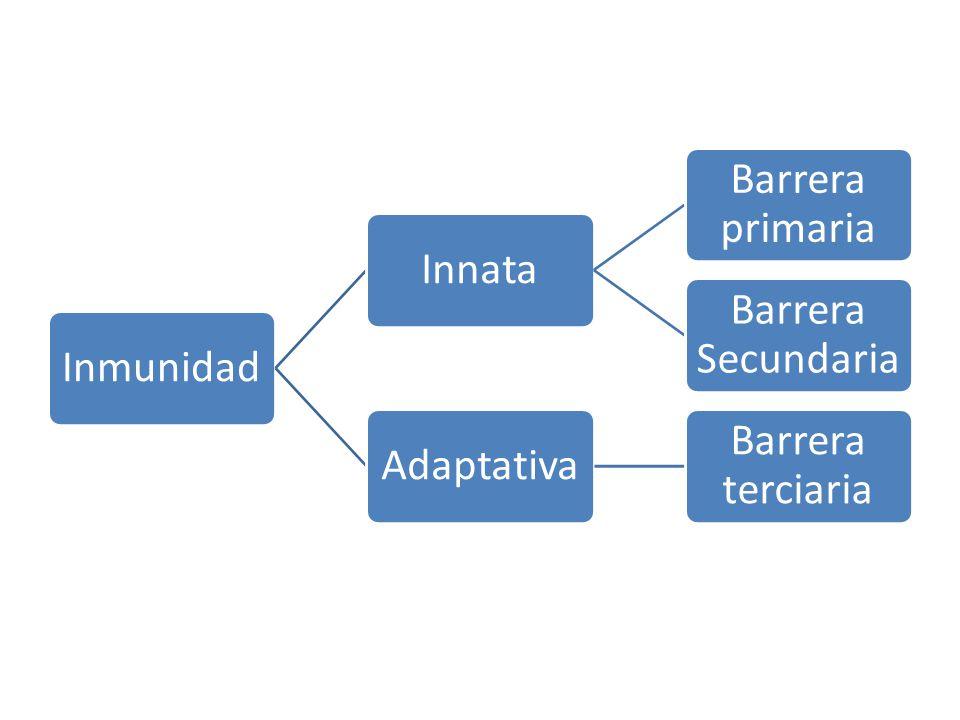 Inmunidad Innata Barrera primaria Barrera Secundaria Adaptativa Barrera terciaria