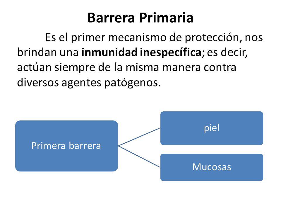 Barrera Primaria