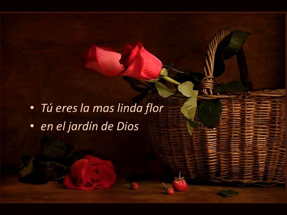 Tú eres la mas linda flor en el jardín de Dios