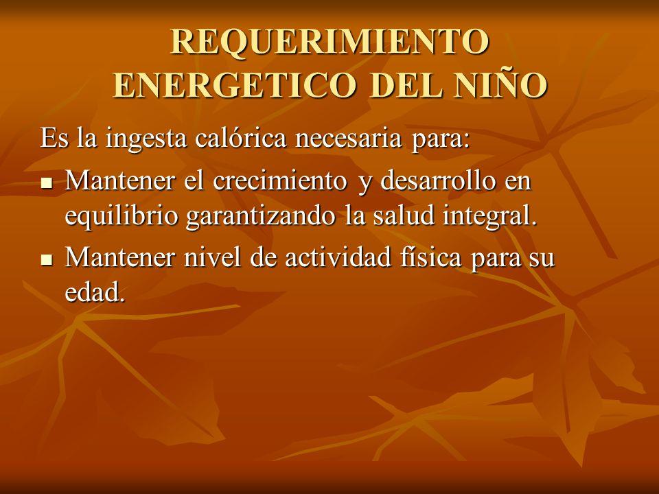 REQUERIMIENTO ENERGETICO DEL NIÑO