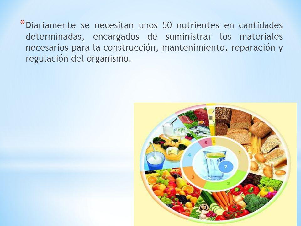 Diariamente se necesitan unos 50 nutrientes en cantidades determinadas, encargados de suministrar los materiales necesarios para la construcción, mantenimiento, reparación y regulación del organismo.