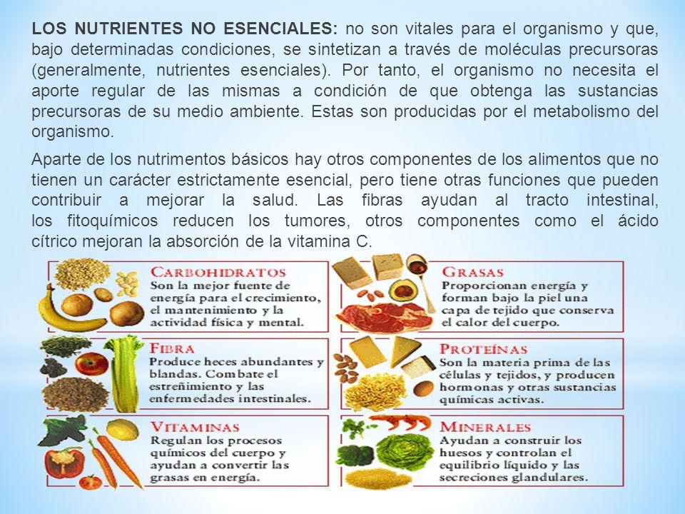 LOS NUTRIENTES NO ESENCIALES: no son vitales para el organismo y que, bajo determinadas condiciones, se sintetizan a través de moléculas precursoras (generalmente, nutrientes esenciales).