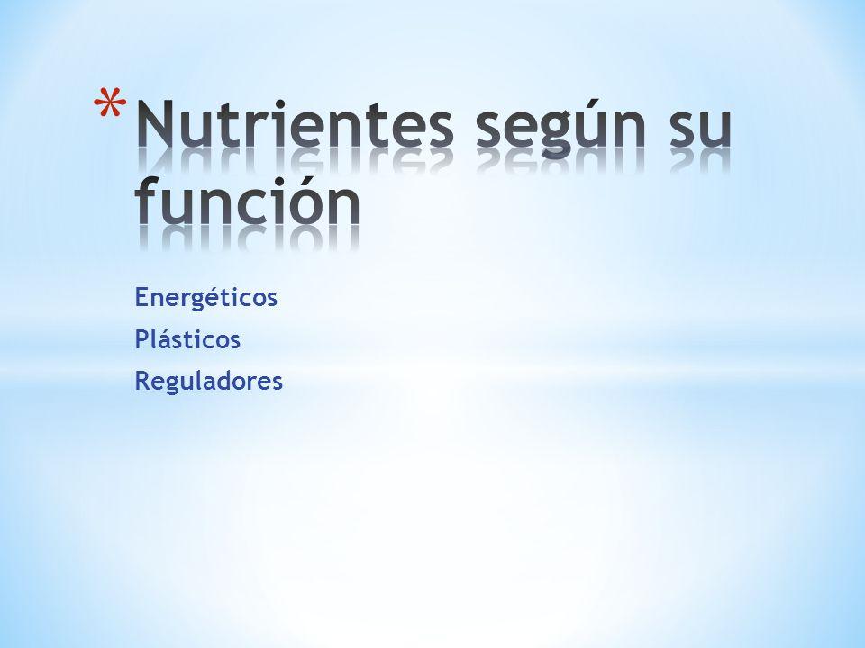 Nutrientes según su función