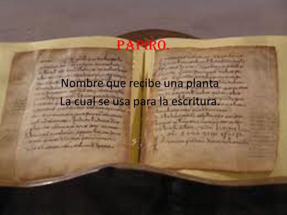 Nombre que recibe una planta La cual se usa para la escritura.