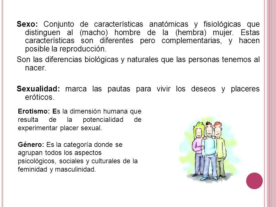 Atractivo Distinguir Entre La Anatomía Y Fisiología Foto - Anatomía ...