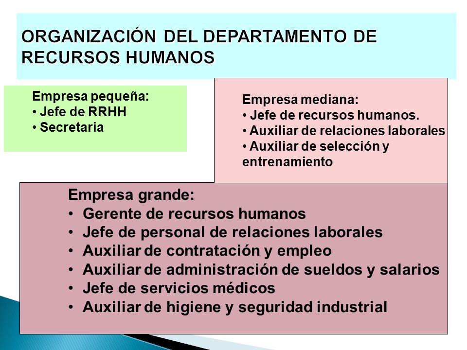 jefe de departamento de recursos humanos blse