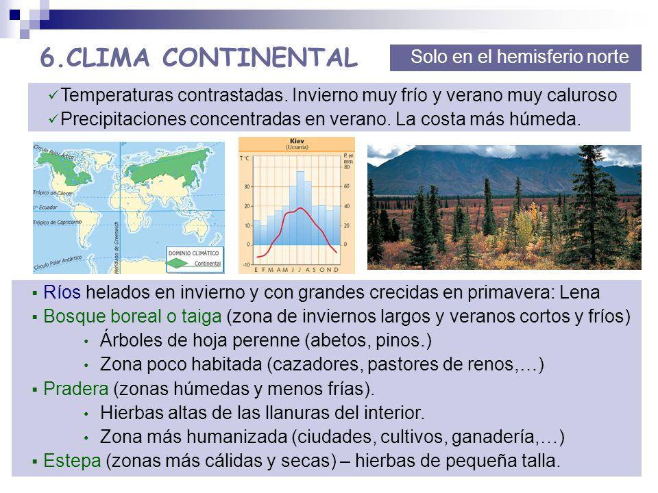 T 5 los paisajes de la tierra ppt descargar for Arboles de hoja perenne para clima frio