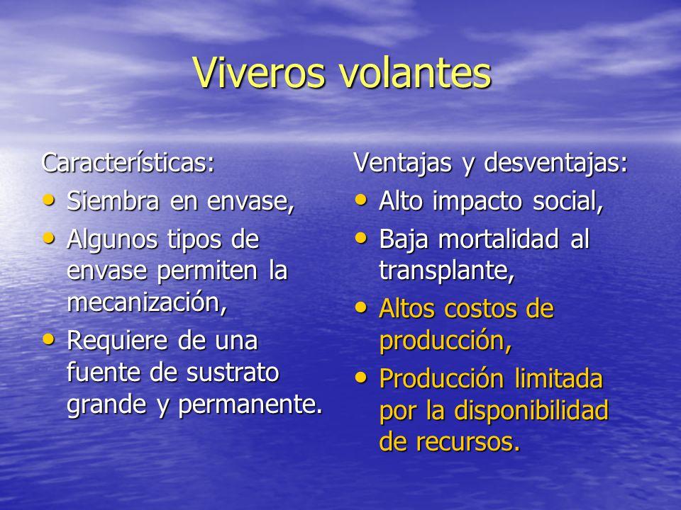 Viveros forestales generalidades ppt video online descargar for Caracteristicas del vivero