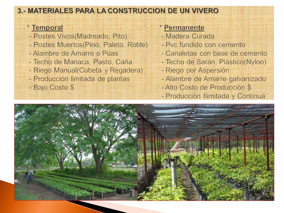 unah curla departamento de produccion vegetal seccion de On materiales para la construccion de un vivero