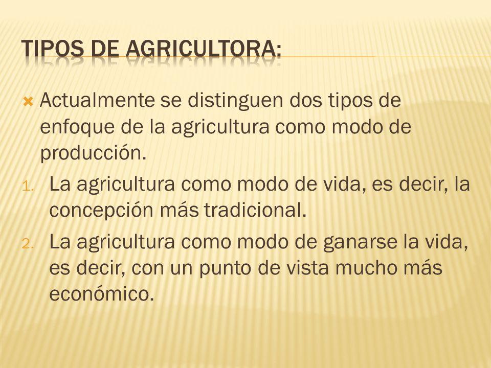 Tipos de agricultora: Actualmente se distinguen dos tipos de enfoque de la agricultura como modo de producción.