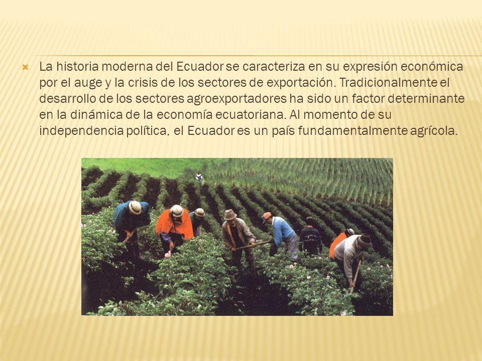 La historia moderna del Ecuador se caracteriza en su expresión económica por el auge y la crisis de los sectores de exportación.