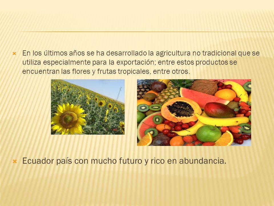 Ecuador país con mucho futuro y rico en abundancia.