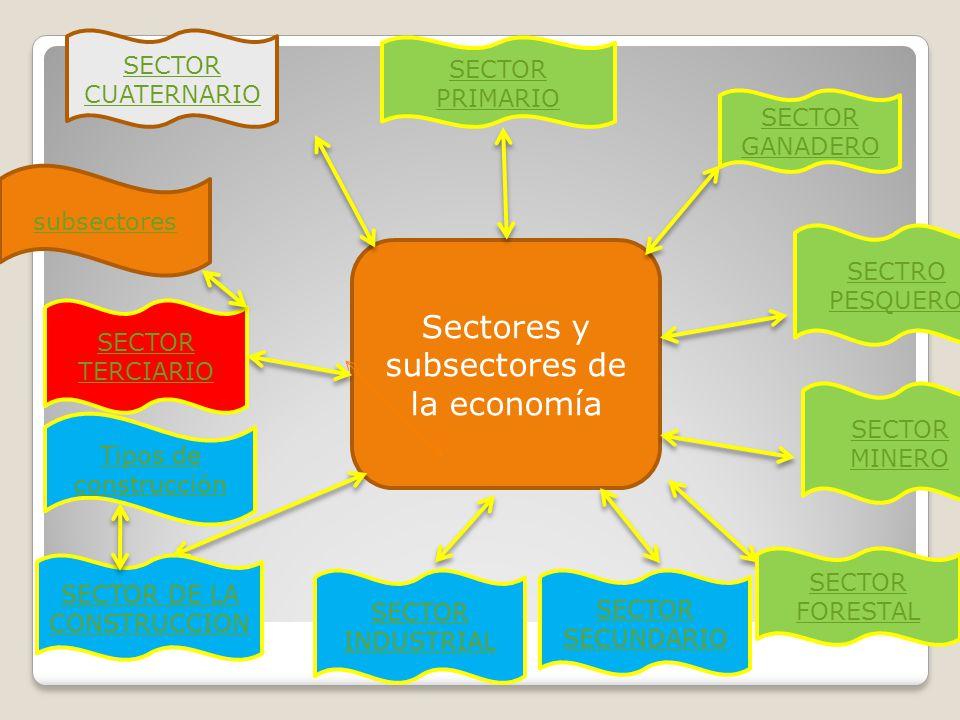 Sectores y subsectores de la economía